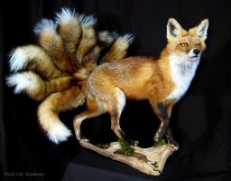 Nine-Tailed Fox (Kyuubi no Kitsune) by WeirdCityTaxidermy