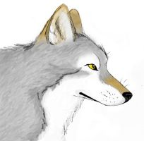 Timber Wolf by CaptainMorwen