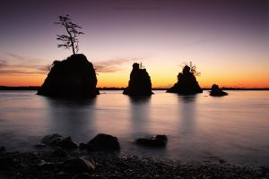 Three Graces - Oregon by pyro303
