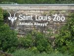 St Louis Zoo by MouseMayhem