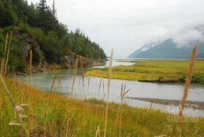 On the Way to Dyea, Alaska 02 by GabOrcinus