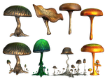 Mushrooms PNG Stock by Roys-Art