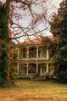 Abandoned Plantation by zieora