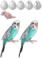 Parakeet Sprite Sheet by Brookreed