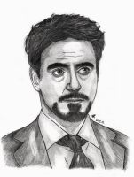 Robert Downey Jr by Lightning-Stroke