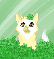 CK: In the Clovers by TheNekoHufflepuff