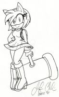 +:Amy Rose:+ A Girl and her Piko Piko Hammer by Jen-C