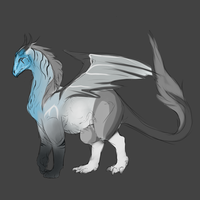 Dragon Design Request by Allixi