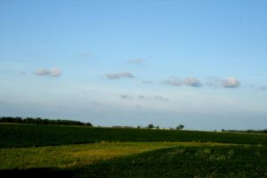 Country Side by DCProductions223