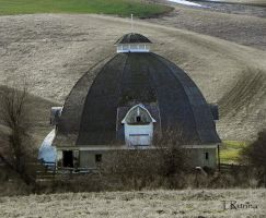 Twelve-sided Barn  by TRunna