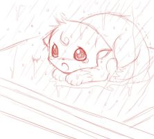 Wet kitten sketch by AngelofHapiness