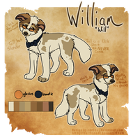 William by xWolfPrincex