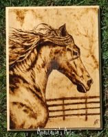 Woodburning - Horse by AnastasiasArts