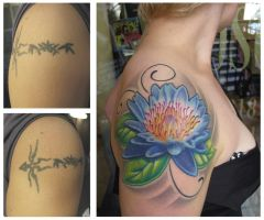 cover up healed by Agryppina
