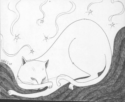 Cat Sleeps by Najie