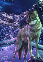 eBook cover: The Way of the Wolf by 4steex