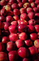 Red Delicious by titian