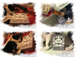 Crucified Cat Box by parasapien
