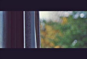 Out My Window, Fall Creeps by GrotesqueDarling13