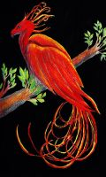 Fire Bird Painting by Elentarri