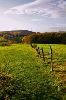 autumnfield by Olendel