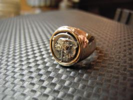 Gallic Medal ring 2 by Debals