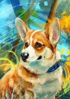 Welsh Corgi by AlaxendrA