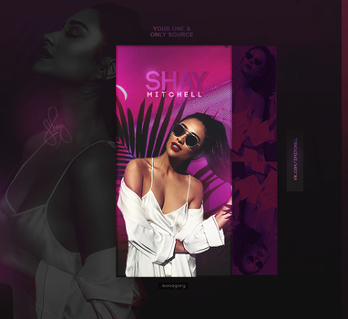 Shay Mitchell by monagory