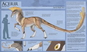 Acerir - Species Model Sheet by Ulario