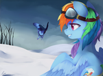Winter by haidiannotes