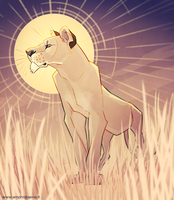 Lioness by iktis