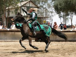 More Knight Joust Stock 049 by tursiart