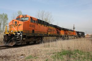 BNSF in the Reeds by Kaback9