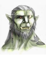 Half-orc portrait by LolloBoloz