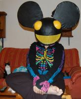 A deadmau5 in my house by VaedanE09