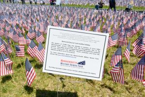 Memorial Day, Sea Of Flags 13 by Miss-Tbones