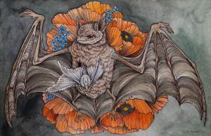 Chiroptera by CaitlinHackett