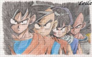 Goku,Krillan,Gohan and Vegeta by Leila490