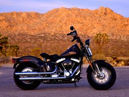 Softail Cross Bones by KeepItMetall