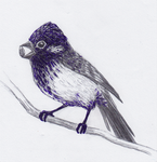 small violet bird by JeanNetti