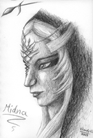 Midna the Twilight Princess by Calefacto