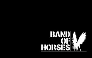 Band Of Horses wallpaper by LarsEliasNielsen