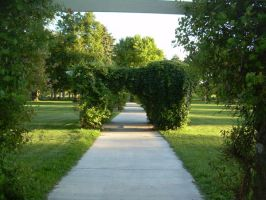Park Pathway by abuseofstock