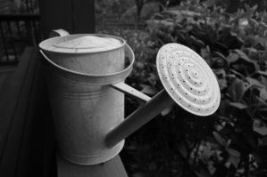 Watering can by Hertz18360