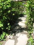 stone path stock by thiselectricheart
