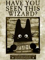 Have you Seen this Wizard? by Azenor