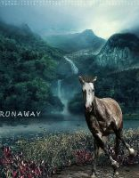 run away by Destination-Equidae