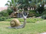 Escargot in Florida by RandyHand