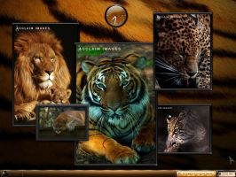My Favorites- Part 2 BIG CATS by tsims533