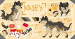 Kasey Ref by NeonWishes7